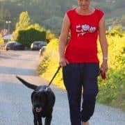 passeggiata con un Labrador